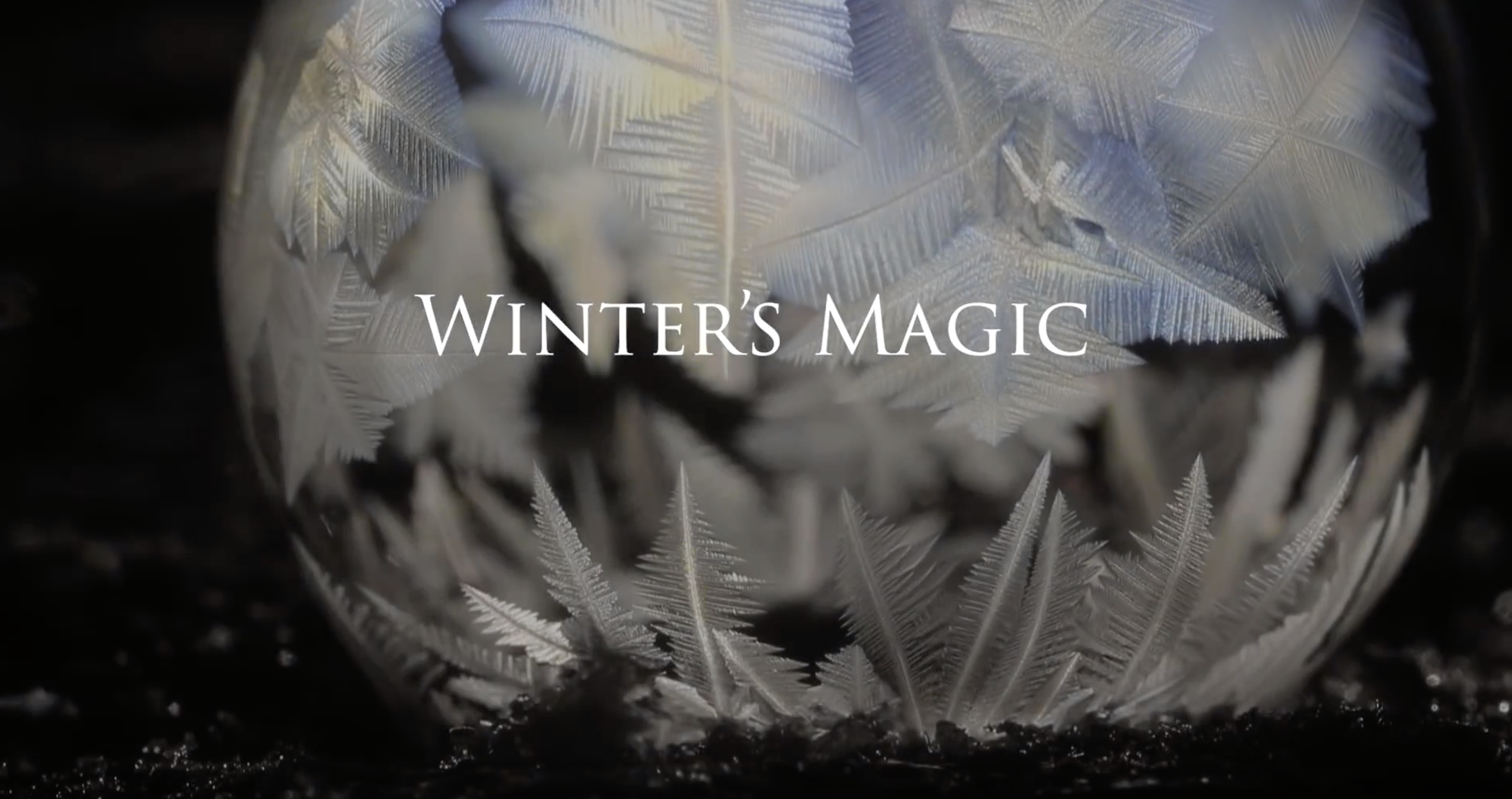 The Arts in Physics: a short film of freezing soap bubbles